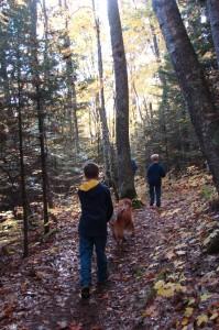 ONE hiking fall 1