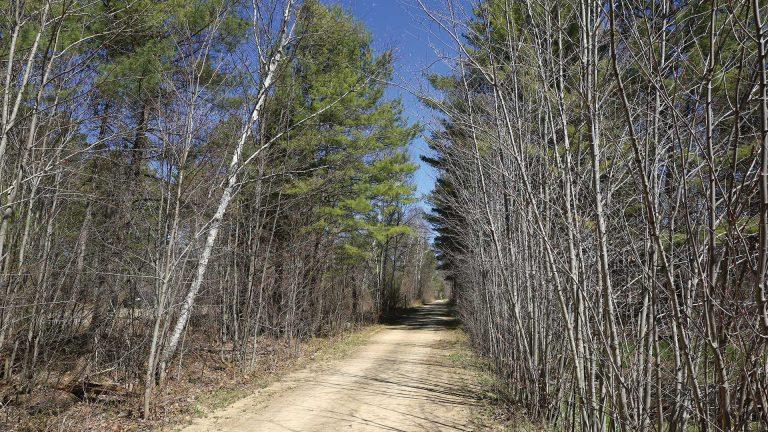 Three Eagle Trail