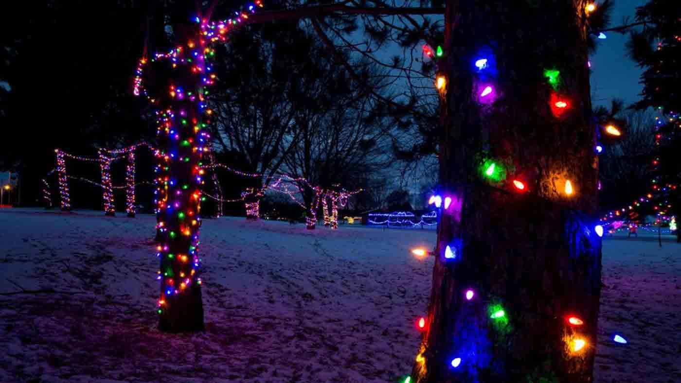 Lights Of The Northwoods