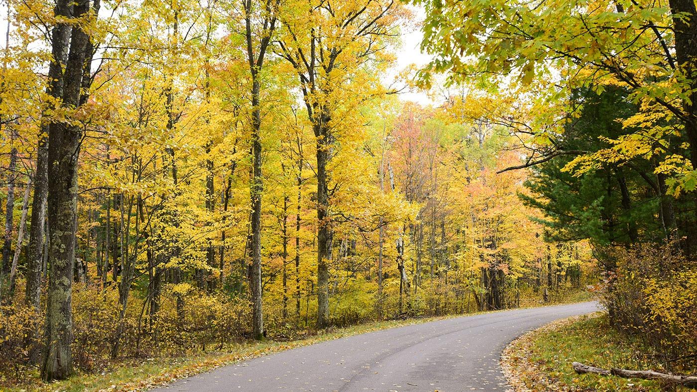 Rustic Road in fall Oneida County Wisconsin